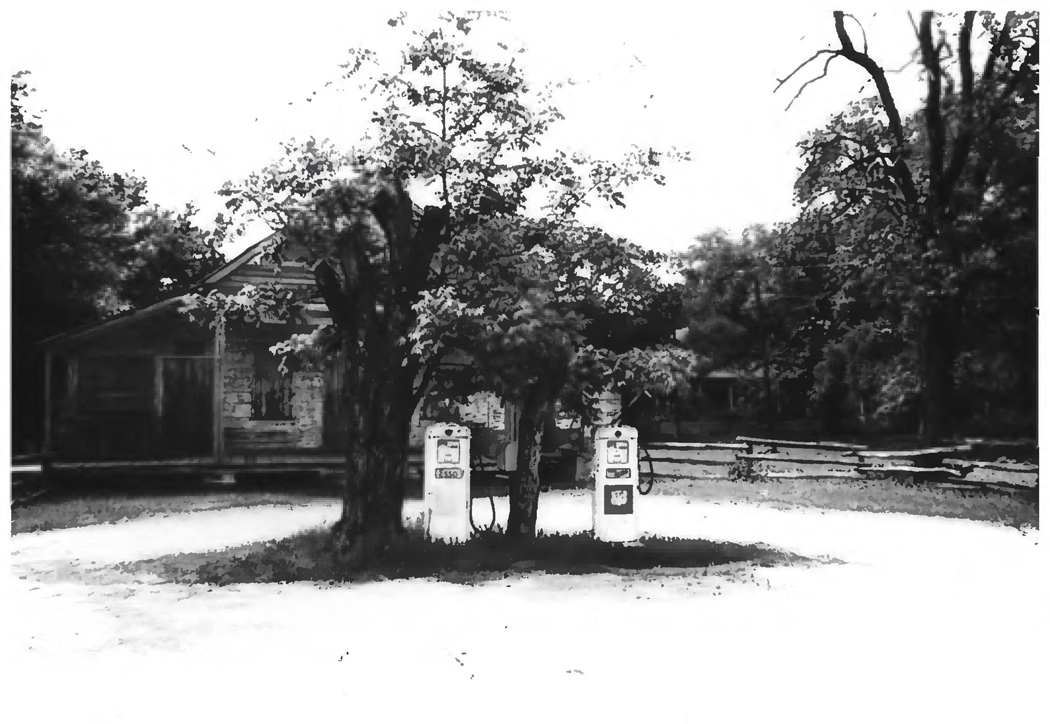 While a tree obscures the front of the Oakland Plantation Store in 1979 the two gas pumps are visible.
