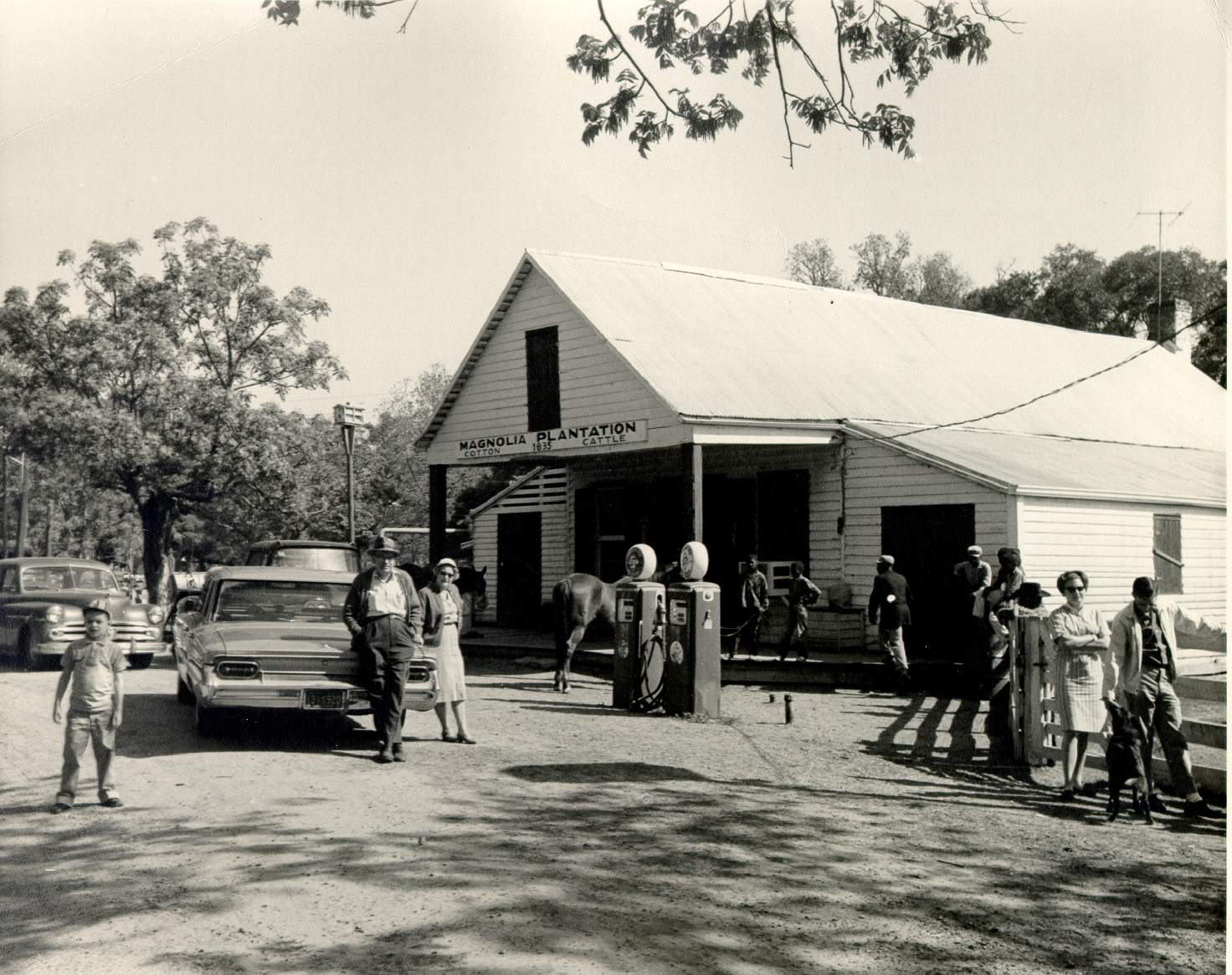 View of the store in operation 1962. People are gathered around a car in front of the store's gas pumps.