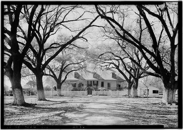Black and white photograph taken in the Oak Allee looking toward the Main House.